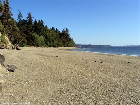 tolmie state park a washington park located nearby gig 17 best images about stomping grounds on pinterest