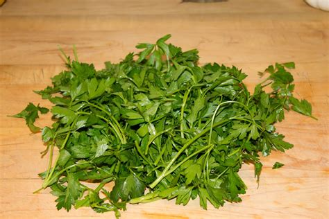 culinary spatterings holy italian parsley batman