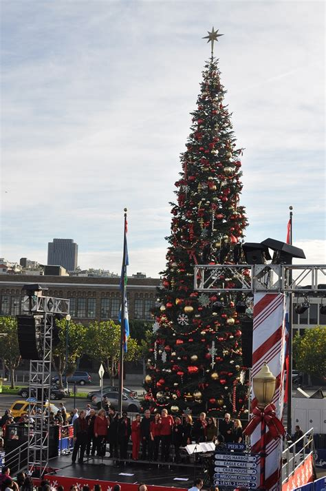 pier 39 holiday tree lighting celebration