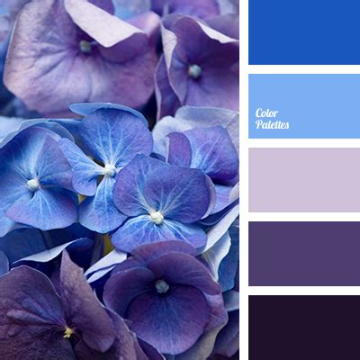 blue purple color purple color palette ideas