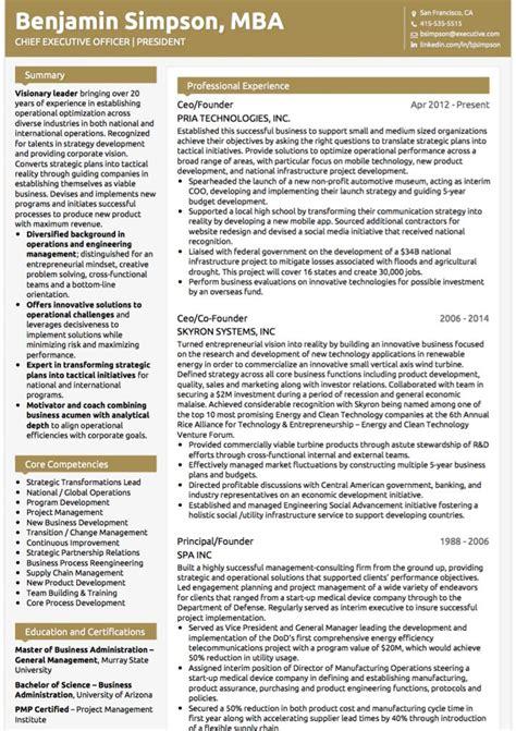 Executive Cv executive cv exles and template