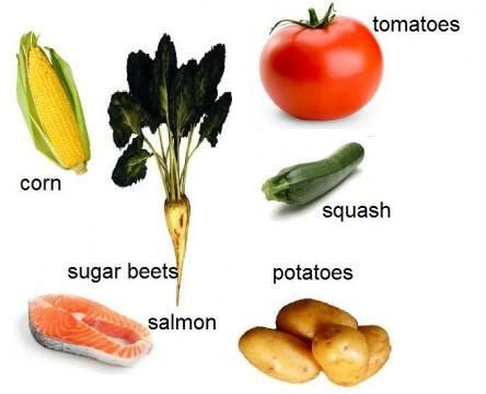 vegetables i should eat everyday list of foods you should eat every day
