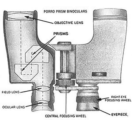 binocular parts diagram choosing binoculars nature and environment