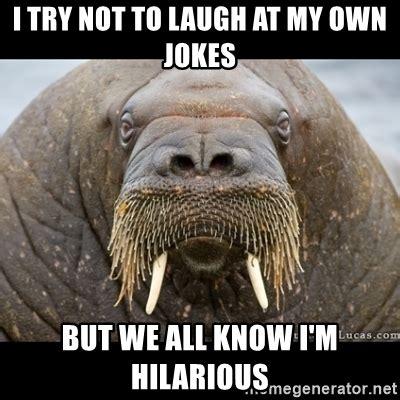 Walrus Meme - walrus meme generator