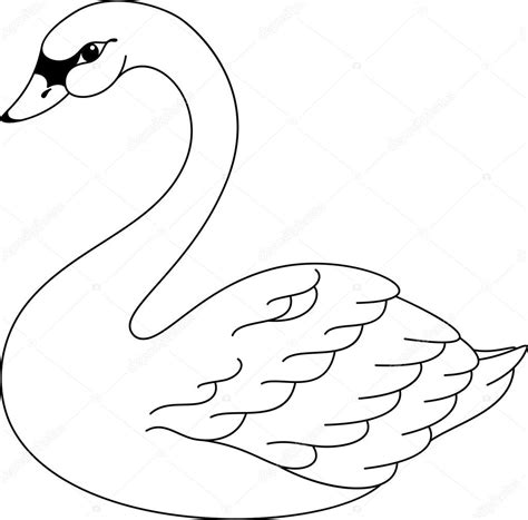swan coloring pages swan coloring page stock vector 169 malyaka 54060425