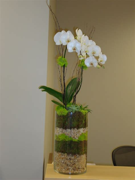 living flower arrangements gardenvignettes com living floral arrangement orchid with