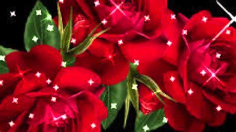 imagenes de rosas romanticas rosas romanticas youtube