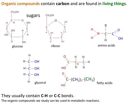 lipids or carbohydrates carbohydrates lipids and proteins