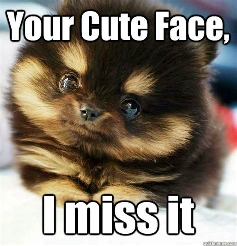 Cute Face Meme - miss you brainlessly cute quickmeme