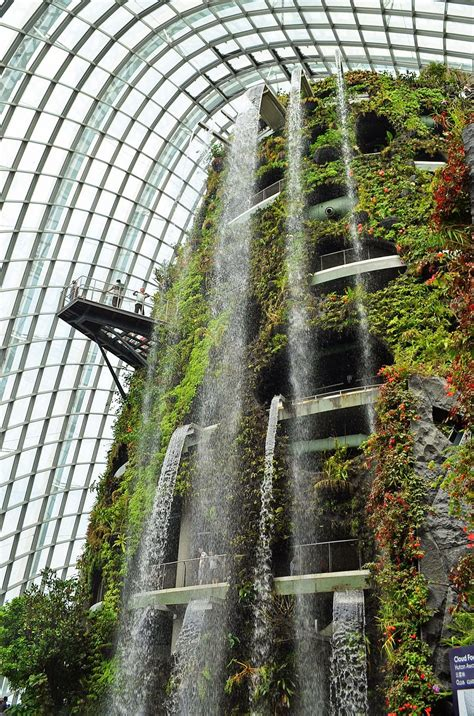 trip  gardens   bay singapore cloud forest