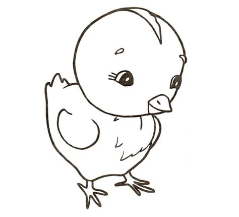 Chicken Coloring Page  SuperColoringcom sketch template