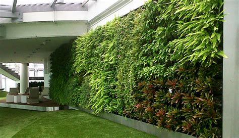 Vertical Garden Benefits Benefits Of A Vertical Garden Or Green Wall At Work Place