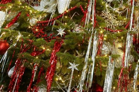 where to recycle your real christmas tree in wales wales