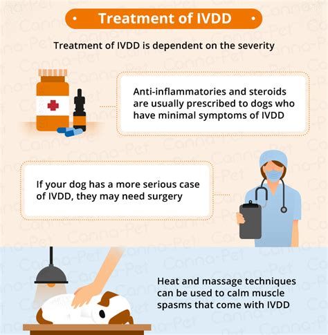 ivdd in dogs intervertebral disc disease ivdd in dogs canna pet