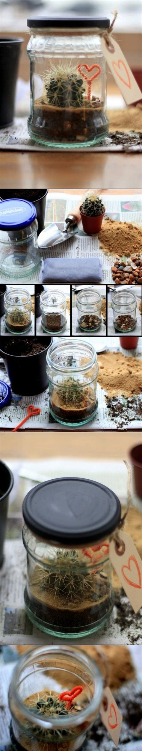 kitchen window terrarium diy terrarium ideas terrariums pinterest terrarium ideas diy terrarium and terrarium