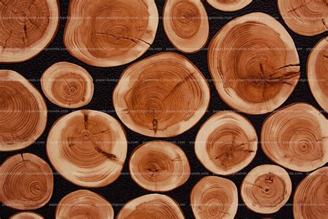Paper backgrounds wood stump tile background hd