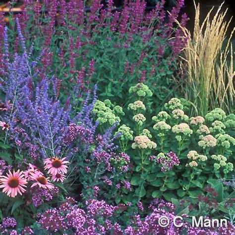 high country gardens nursery to grow