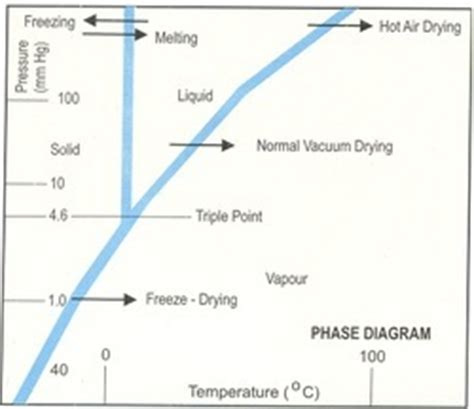 freeze drying phase diagram freeze drying systems pvt ltd manufacturer from manjusar india introduction