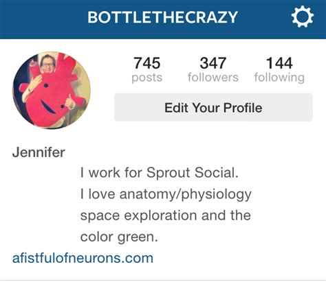 best bio for your instagram how to write instagram bios for businesses sprout social