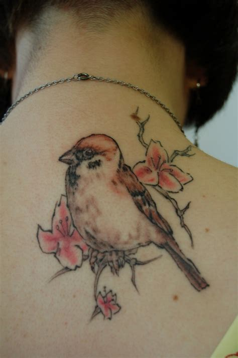 sparrow tattoo on chest meaning sparrow tattoos designs ideas and meaning tattoos for you
