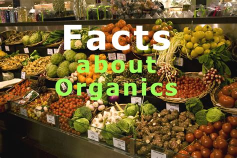 10 Facts About Organic Food by Facts About Organic Food That You Didn T Institute