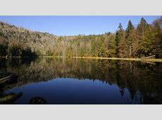 Urlaub Bayerischer Wald online buchen | JAHN REISEN Last Minute Urlaub All Inclusive