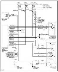 2005 vw beetle car stereo wiring diagram information