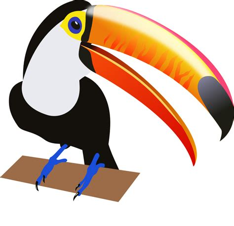 free clipart free to use domain toucan clip