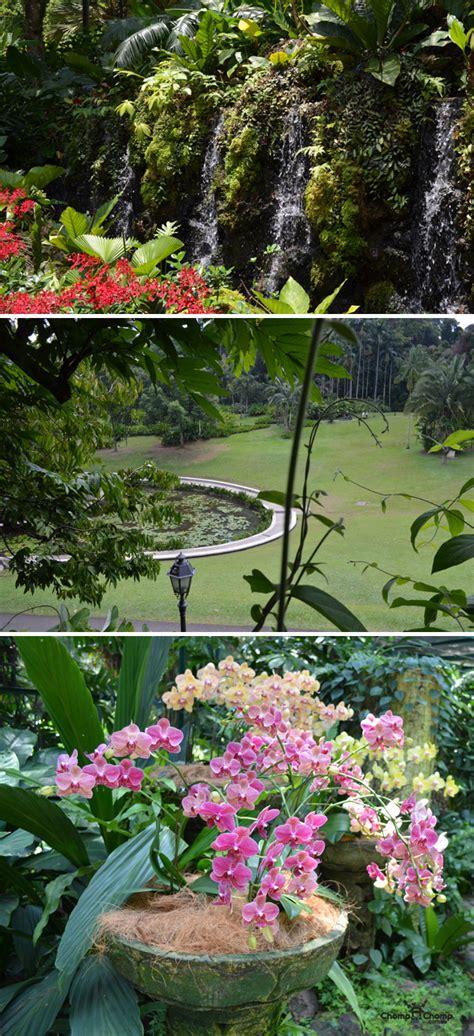 Halia Singapore Botanic Gardens Food Travel Blog Botanic Garden Food
