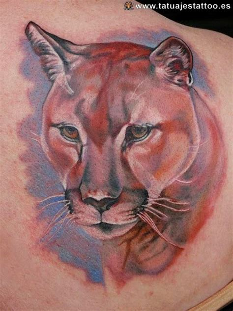 cougar mountain lion tattoo designs 78 images about tiger tattoos on a