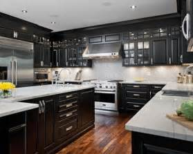 black kitchen cabinets pictures black cabinets home design ideas pictures remodel and decor