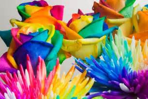 colored flowers wedding flower wedding bouquet rainbow colors wedding