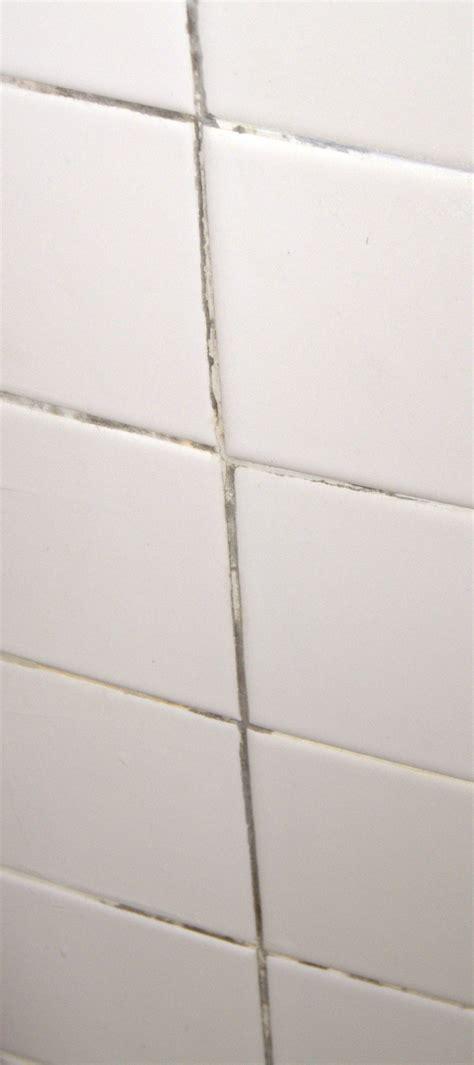 bathroom tile mildew removal