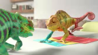 chameleon changing color animal myths the of teresa