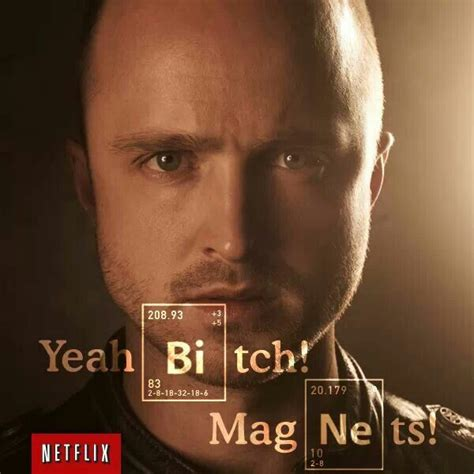 Magnets Bitch Meme - yeah bitch magnets aaron paul bitch pinterest
