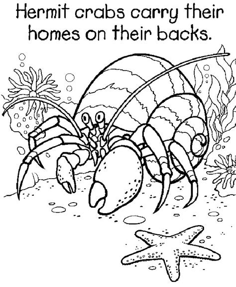 free coloring pages of 5th grade