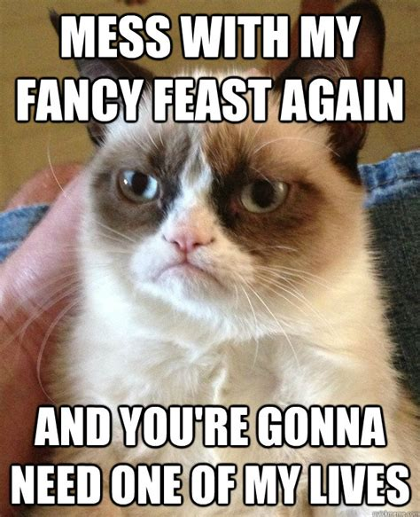 Fancy Feast Meme - mess with my fancy feast cat meme cat planet cat planet