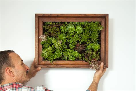 how to make a vertical garden frame how to make a vertical garden the crafty gentleman
