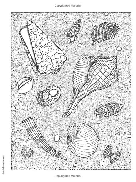 nature scapes coloring pages 49 best schelpen images on pinterest shells shell and