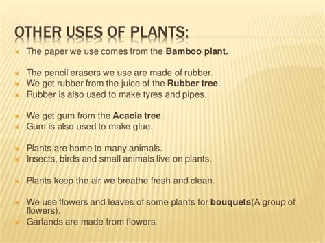 How Many Trees Does It Take To Make Paper - 7 uses of plants