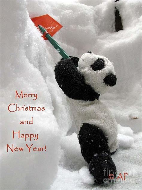 The Year Of The Panda merry and happy new year from ginny the baby
