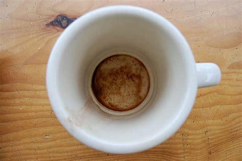 empty coffee mug   Daily Coffee News by Roast Magazine