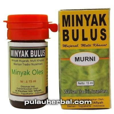 Minyak Bulus Asli 10 Ml minyak bulus asli obat multi manfaat bulus jual