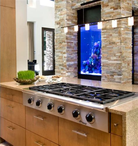 Kitchen Design Aquarium | the kitchen aquarium an unexpected but inspiring design