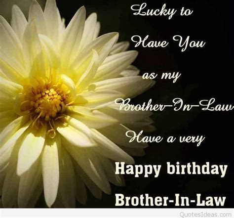 happy birthday brother in law images happy birthday brothers in law quotes cards sayings