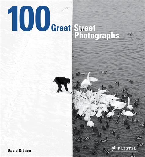 david gibson 100 great street photographs prestel publishing hardcover
