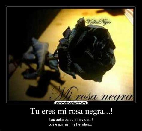 rosas negras con frases tristes para dedicar imgenes que compartir tu eres mi rosa negra desmotivaciones