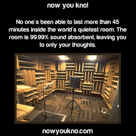 where is the quietest room in the world fact interesting facts amazing world s quietest room nowyoukno