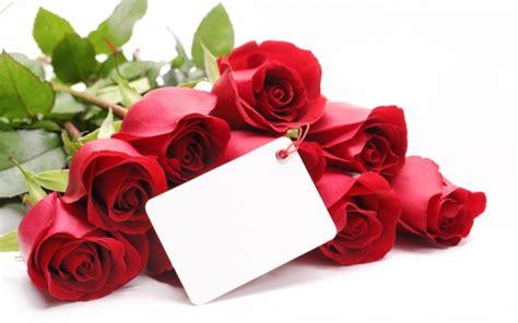 schöne len valentinstagsgeschenke f 252 r sie seine liebe ausdr 252 cken