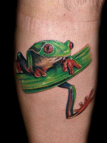 tree frog tattoo tattoos spot tree frog tattoos